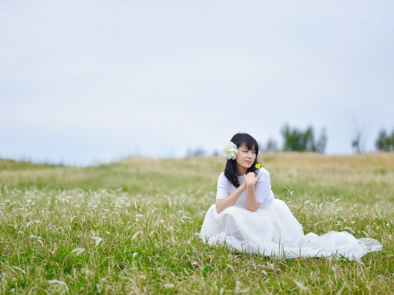 photo plan-d